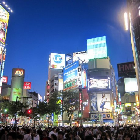 Le Shibuya Crossing